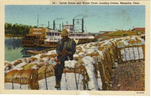 Memphis Levee Postcard