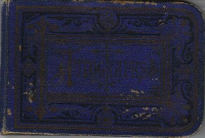 Parthenia Parr Calhoon Autograph Book 1878 (Collection of Frances and John Finley)