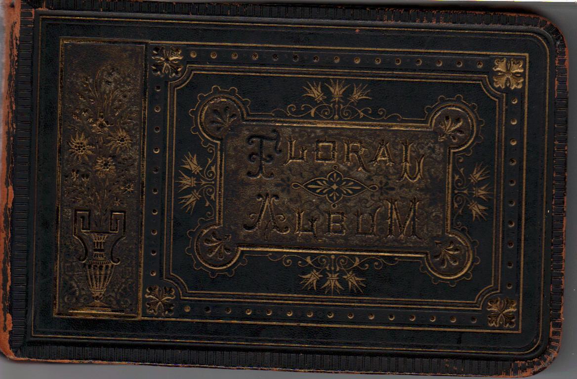 Very best Floral Album 1878 « Georgetown Steamboats XN26